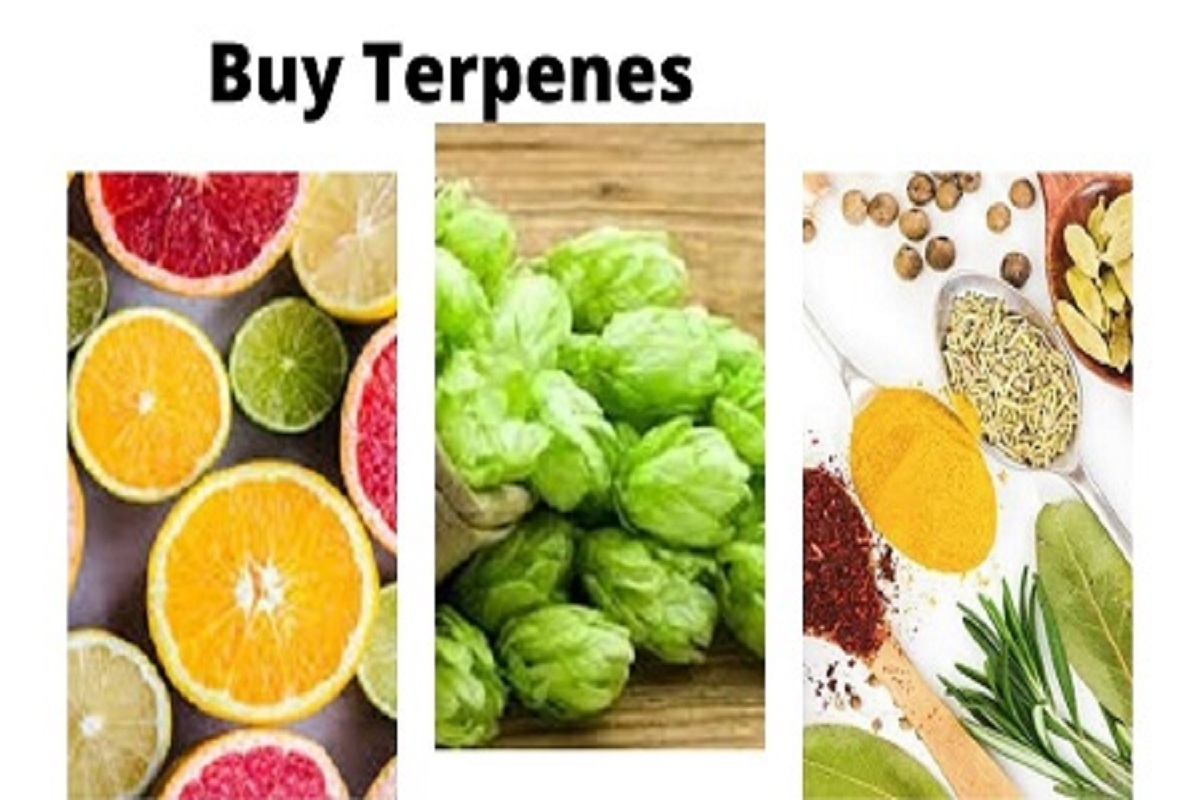 Buy-Terpene
