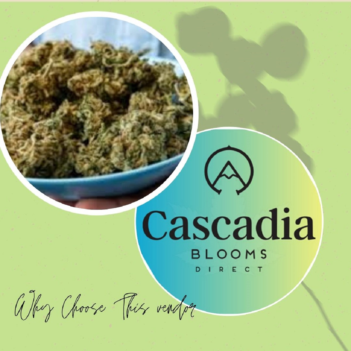 Cascadia Blooms Vendor