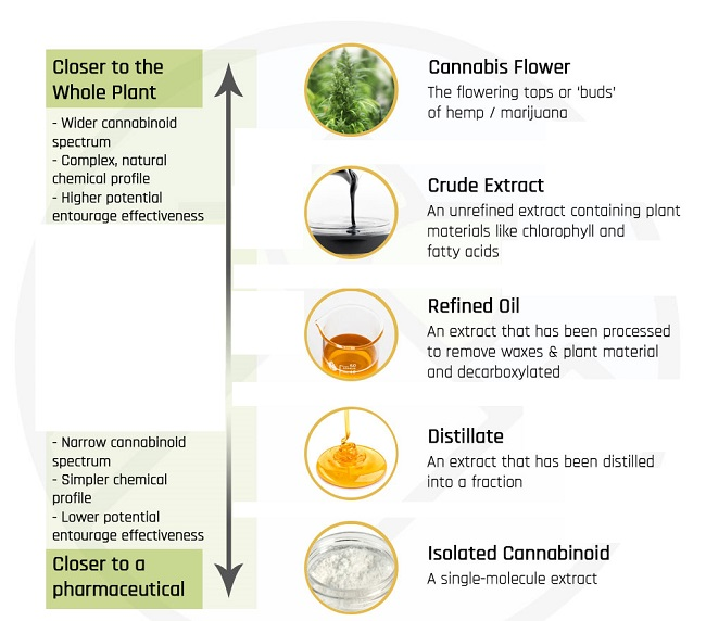 cannabis extraction process